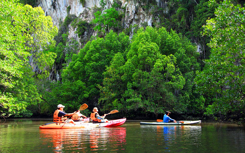Kayaking + Elephant Bathing & Show + Thai Boxing Half Day Tour