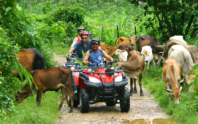Rafting + ATV + Elephant Trek + Flying Fox Tour
