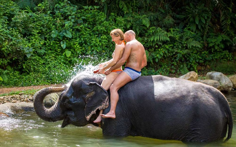 Elephant Trek + ATV + Rafting + Monkey Cave